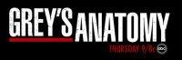 Grey-s-Anatomy-Cast-greys-anatomy-1257049_1024_768