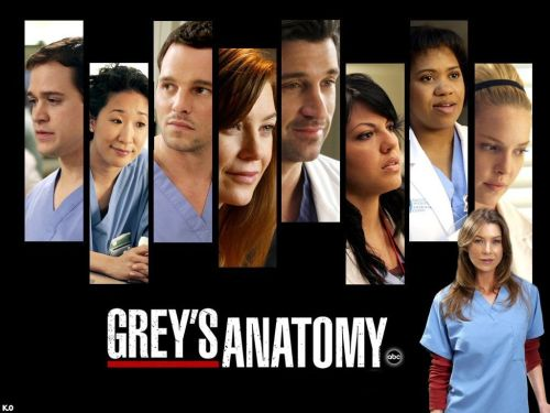 Grey's Anatomy 1ª Temporada – HDTV Dublado Torrent Download (2005)