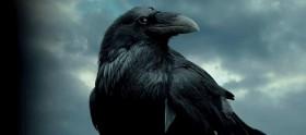Novo teaser da 5ª temporada de Game of Thrones