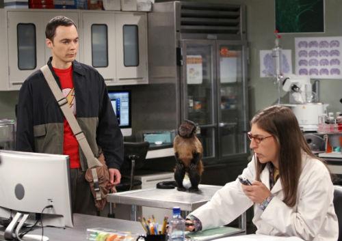 O casal foco do episódio