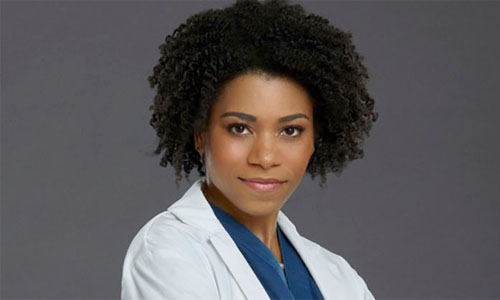 Maggie Pierce Greys Anatomy