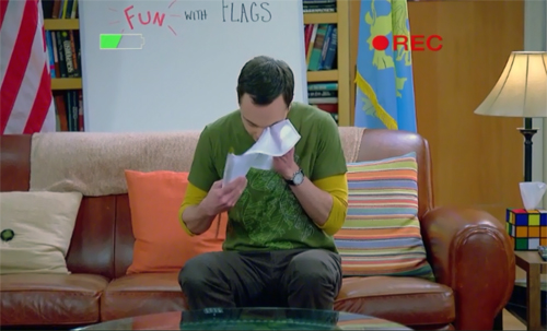 The-Big-Bang-Theory-8x10-Fun-With-Flags-Sheldon