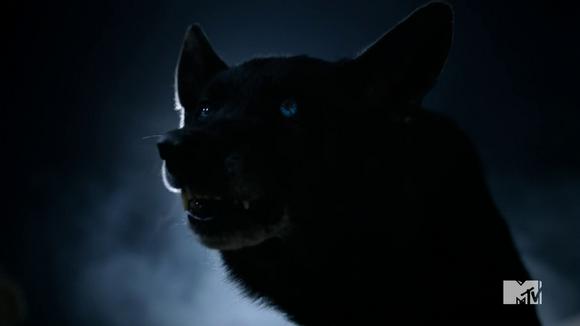 tw derek hale wolf