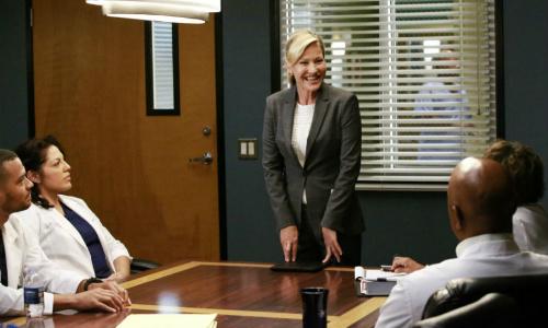 Greys-Anatomy-Season-12-novo-chefe-residente